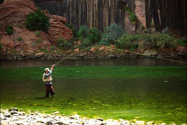 The arizona fly fishing wall shop trips for Panguitch lake fishing report